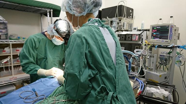 手術時の注意